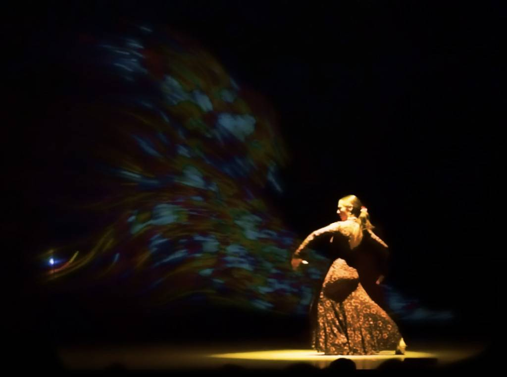 Flamenco interactivo